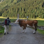 TREK TIROL 2 VE012 033