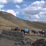 CHILE,BOLIVIA,BRASIL 1 170