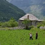 ALBANIA Y MONTENEGRO 034
