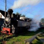 Tren en Maramures