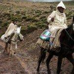 Viajandos sobre mulas en el Alto Atlas